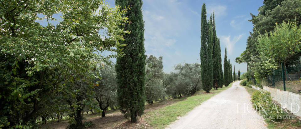 Villas and farmhouses in Tuscany Image 18