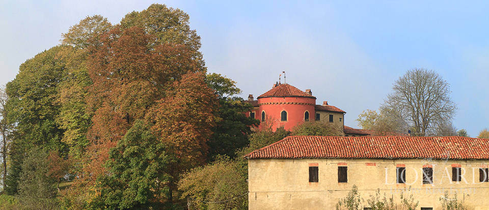 Castles for sale in Piedmont Image 6