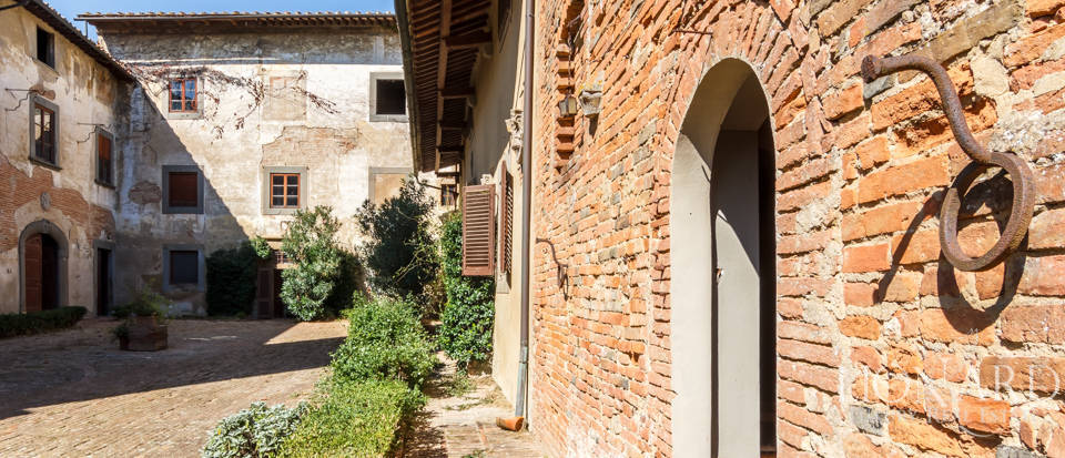 Lovely luxury property with vineyards for sale in Pisa Image 13