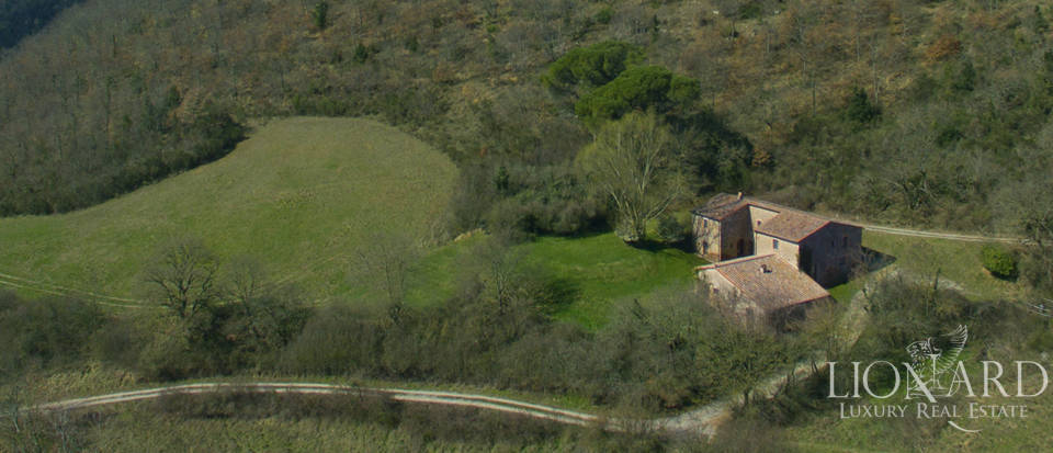 Farmhouses with swimming pool in Siena Image 15