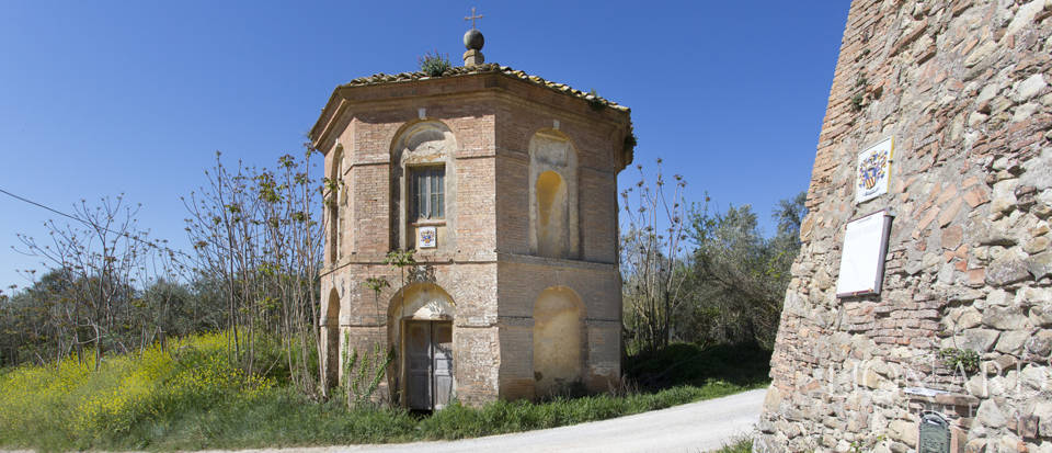 Historical estate for sale in the Tuscan countryside Image 17