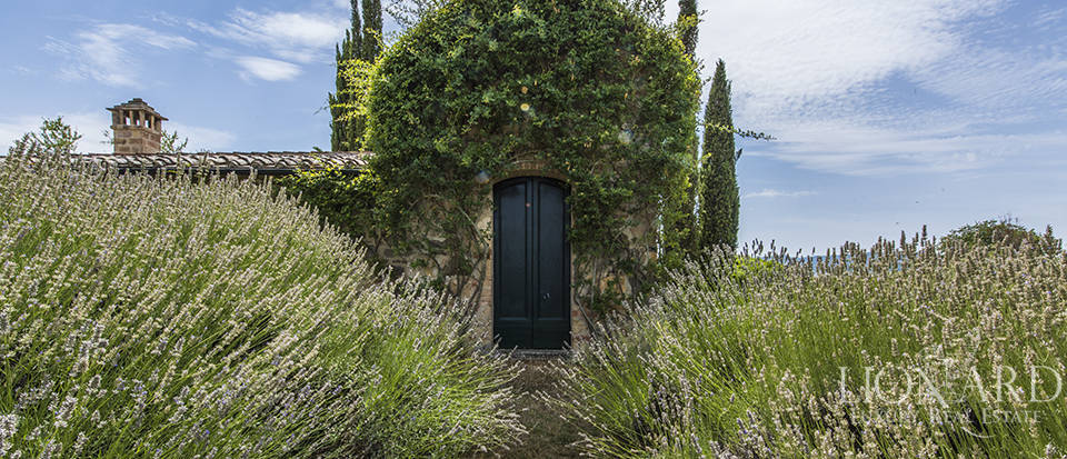 Luxury estate for sale in Tuscany Image 57