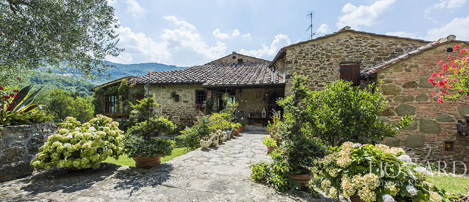 luxury estate with swimming pool in greve in chianti