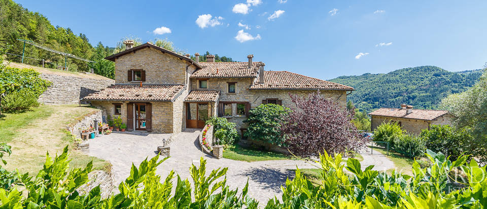 luxury estate in florence's countryside