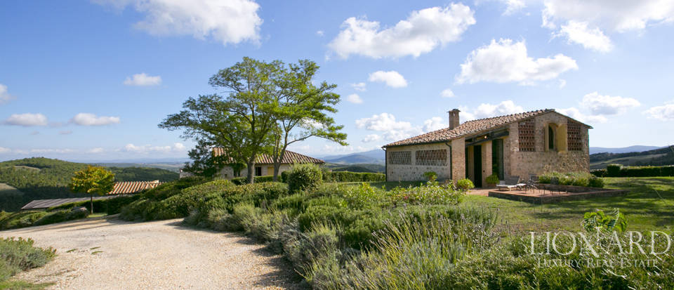 Estate for sale near Siena Image 12