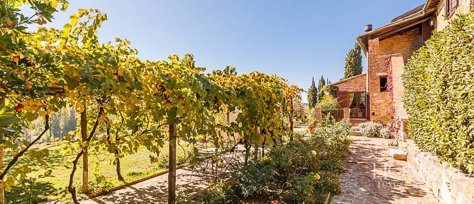 Agritourism resort for sale in montepulciano Image 19