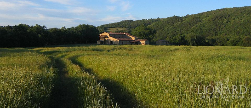 farmhouse for sale tuscany agriturismo for sale tuscany