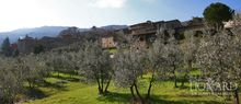 vineyard for sale farm for sale in italy