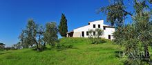 luxury villa for sale near florence