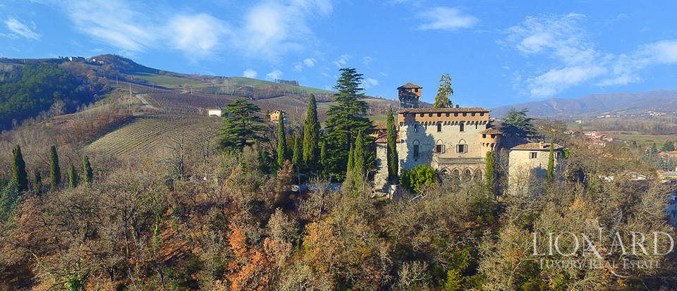 ko castle for sale in piedmont