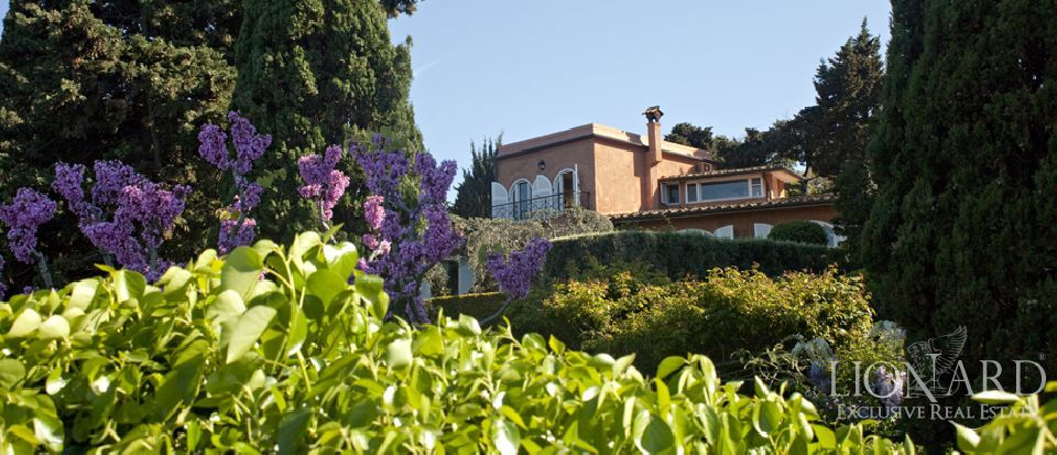 Real estate – Tuscany villa Image 7