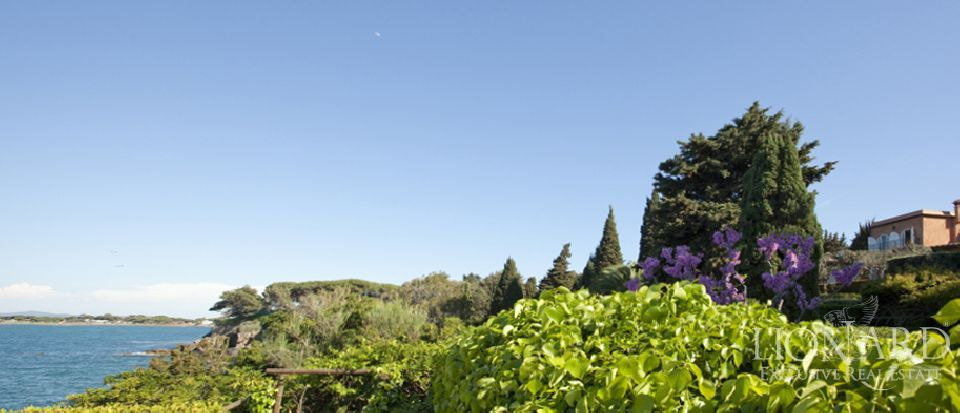 Real estate – Tuscany villa Image 6