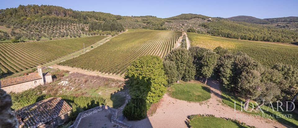 Castle for Sale in Tuscany, in the Chianti area Image 24