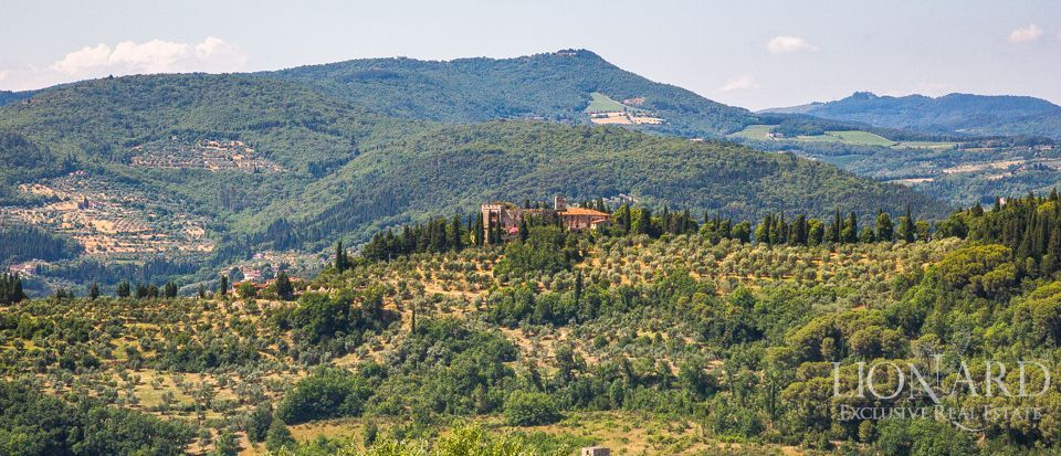 Castello in Toscana Image 39