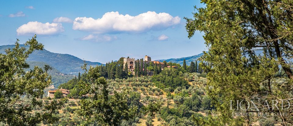 Castello in Toscana Image 38
