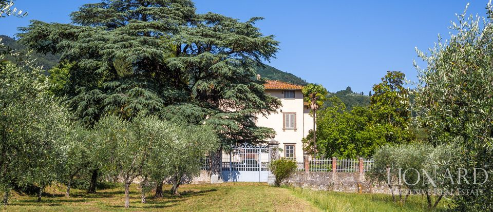 Luxory villas for sale in Lucca Image 9