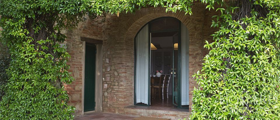 Agriturismo di charme in Toscana, Pisa  Image 46
