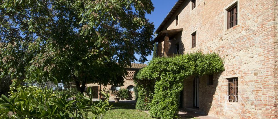 Agriturismo di charme in Toscana, Pisa  Image 44