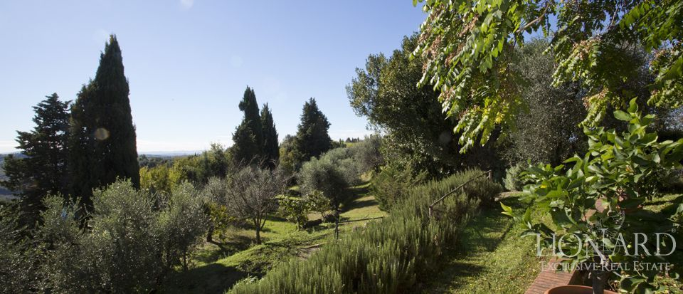 Agriturismo di charme in Toscana, Pisa  Image 43