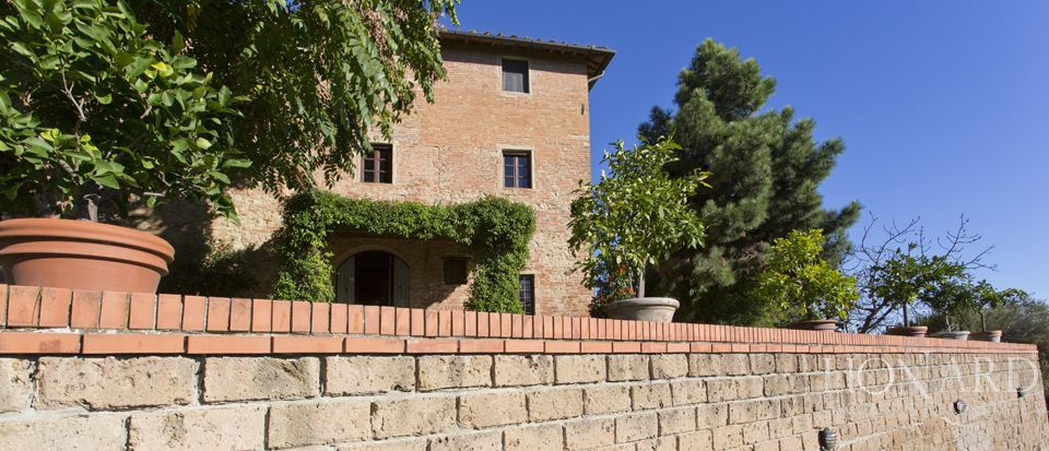 Agriturismo di charme in Toscana, Pisa  Image 30
