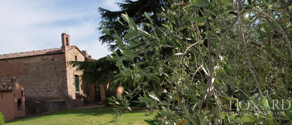 Agriturismo di charme in Toscana, Pisa  Image 18