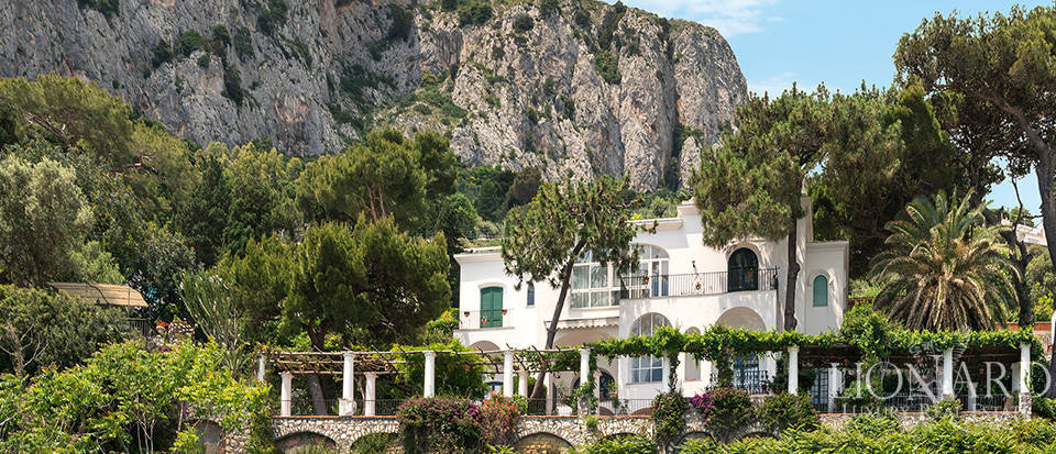 Dream homes in Capri  Image 4