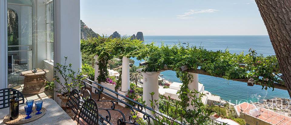 Dream homes in Capri  Image 39
