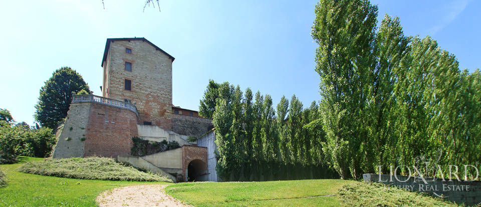 Castles for sale in Piedmont Image 4