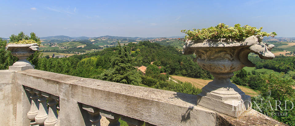 Castles for sale in Piedmont Image 17