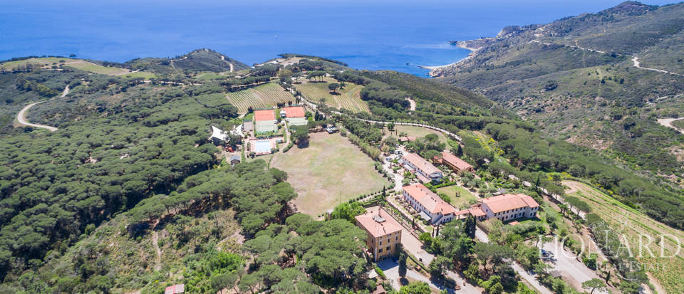 Exclusive resort by the Island of Elba's stunning sea
